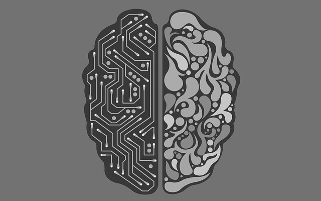 How does computer memory work- Two Sides of a Brain