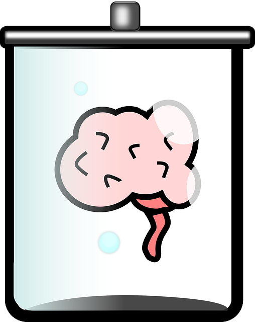 True Story of How Einstein's Brain was Stolen for Science- Brain in a jar